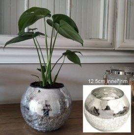 GLASS CHLD/ POT COVER SILVER LRG