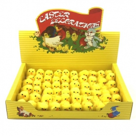 CHICKS DISPLAY 60