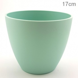 PLASTIC POT MEDIUM MINT