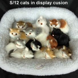FURRY CATS SET 12