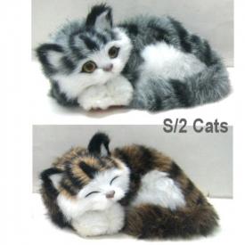 FURRY CATS SET 2