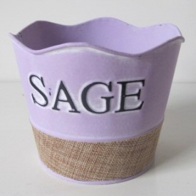 HERB COVER SAGE