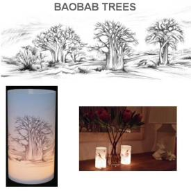 T/LITE COVER BAOBAB TREES