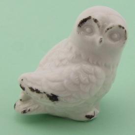 OWL WHITE